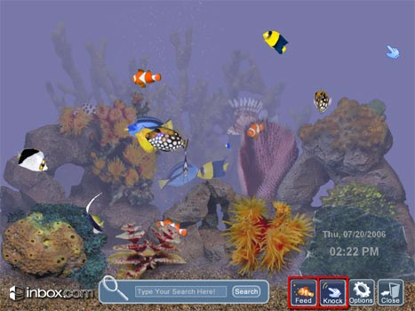 moving fish tank how to